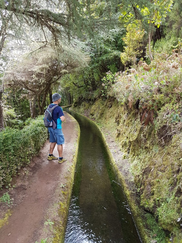 levada, walking tours madeira